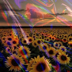 3d Rainbow Psychedeli Wallpaper Gif Photography Trippy Fluffy Cool Beautiful Flower Nature