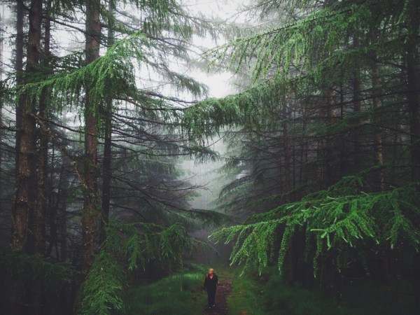 Landscape Nature Artists Vsco