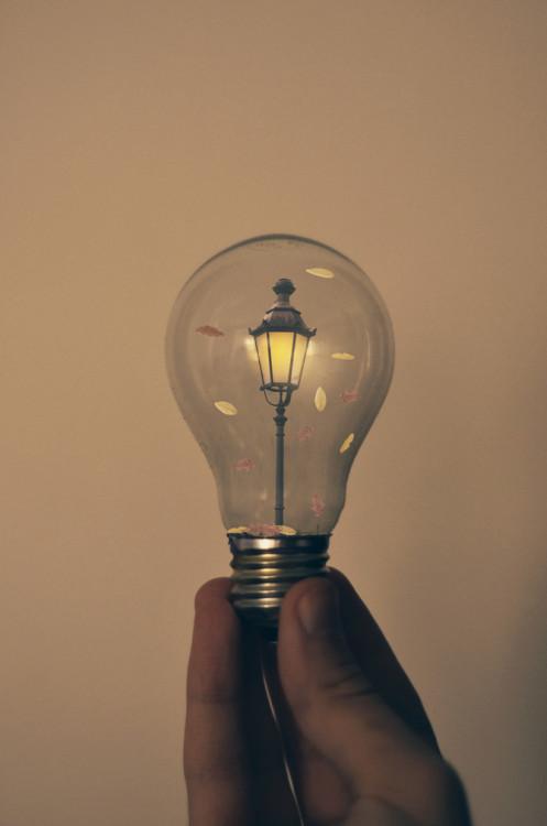 photography art design surreal digital art light bulbs