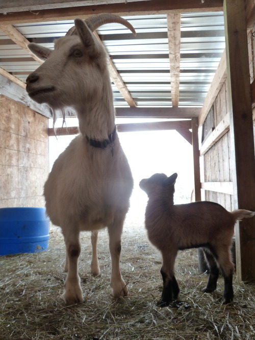 May and baby Molly!