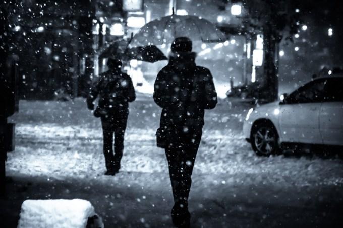指先の寒さ対策におすすめの防寒グローブ、LITTLE PRESENTS(リトルプレゼンツ)「オーシャングローブ」