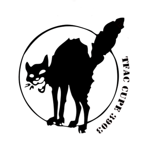 The TFAC logo, a graphic image of a black cat