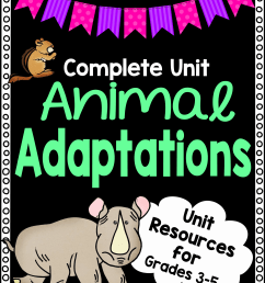 Animal Adaptations Worksheet Unit Plan for Teachers [ 3000 x 2250 Pixel ]