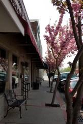 Down town on Main Street 11