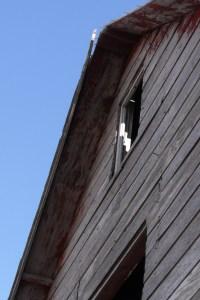 Barn against the sky