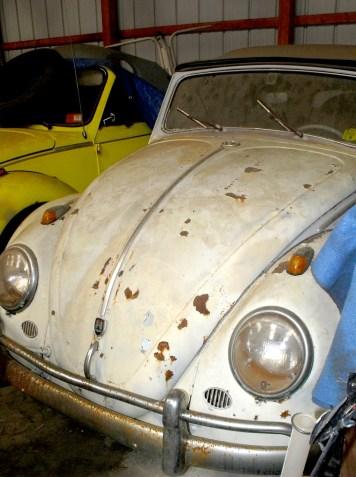 Volkswagon beetle convertible