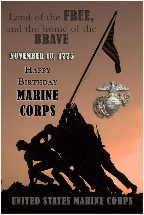 Happy Birthday Marine Corps, the official birthday of the USMC is November 10, 1775