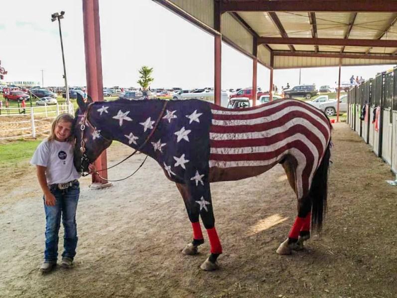 Patriotic Horse Costume