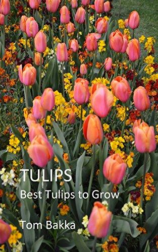 TULIPS: Best Tulips to Grow