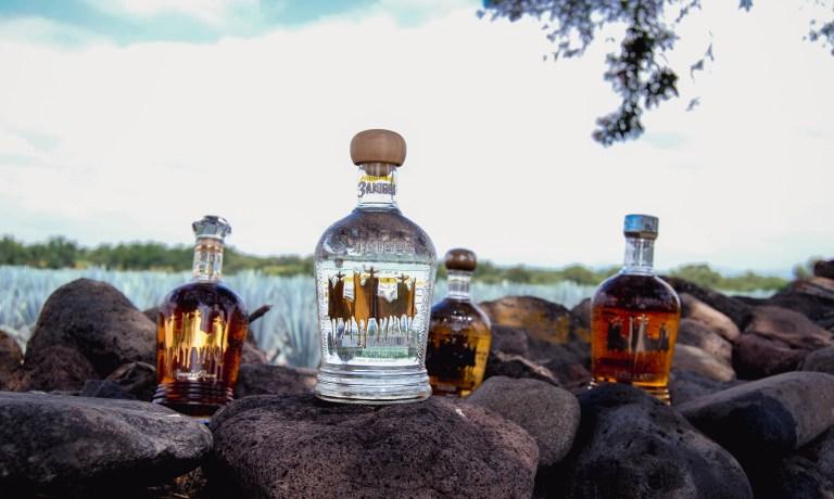 3 Amigos Tequila in Los Altos de Jalisco