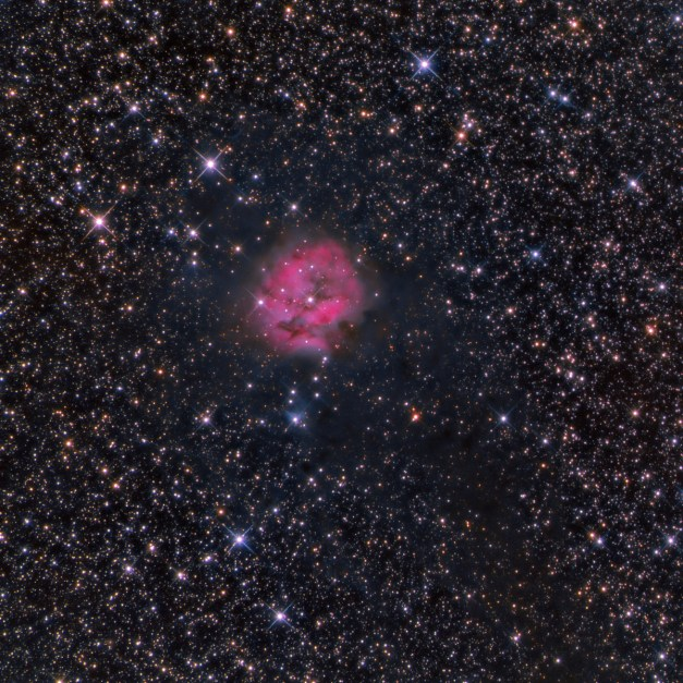 Cocoon Nebula - IC5146 -- in Cygnus Location: Cherry Springs, PA Equipment: Imaging Camera = ATIK 383L Camera Autoguiding Camera = Atik16IC via an OAG Telescope OTA = Tele Vue NP127is @f5.2 Mount = CGEM Home made cross filter Exposures = multiple 5 min. L and multiple 10 min. each RGB Software = Maxim DL and Photoshop CS5