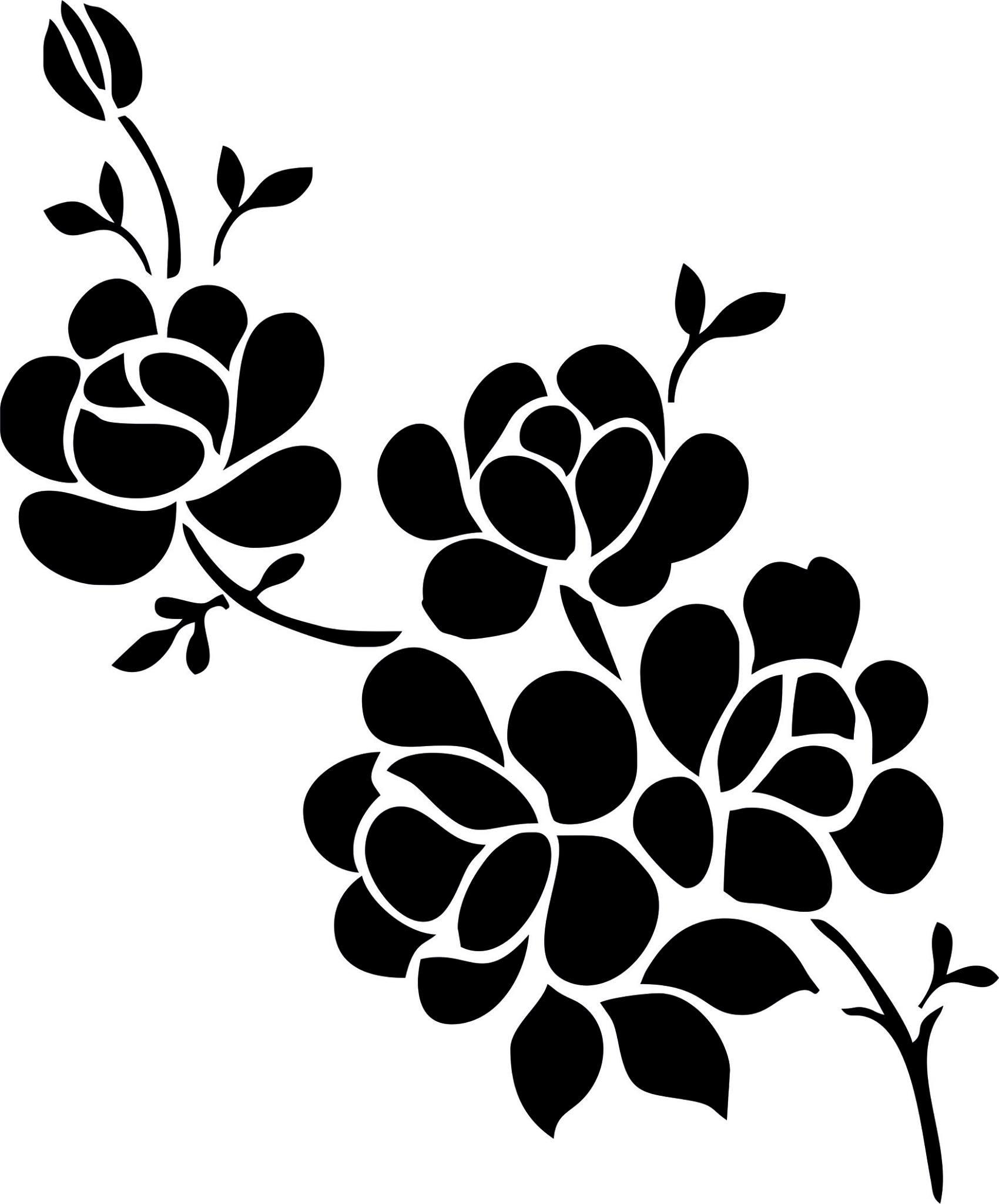 elegant black and white