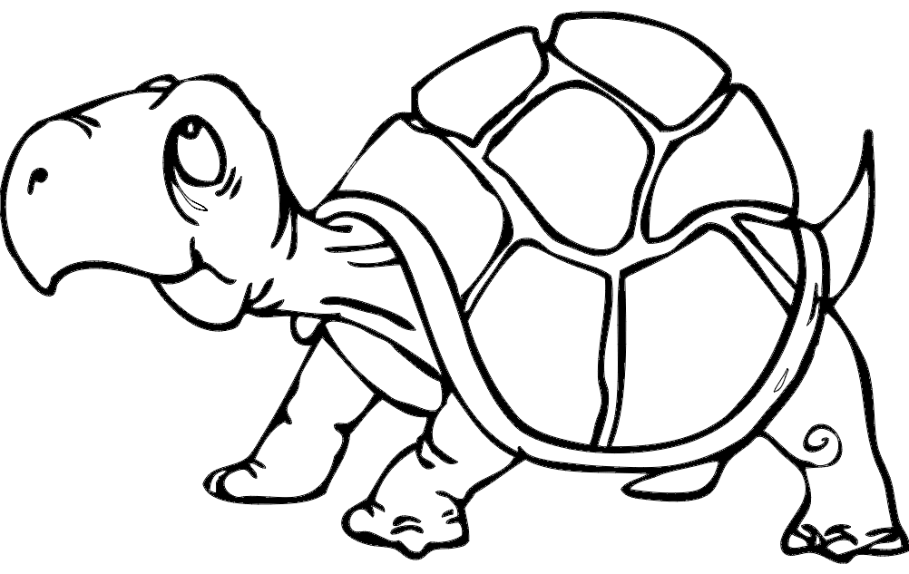 Turtle Dxf File Free Download
