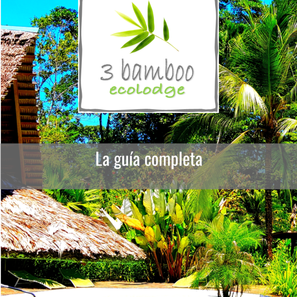 portada ebook 3 bamboo