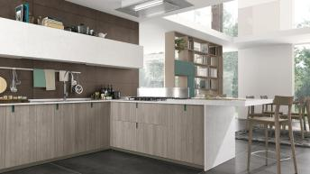 207289-immagina-bridge