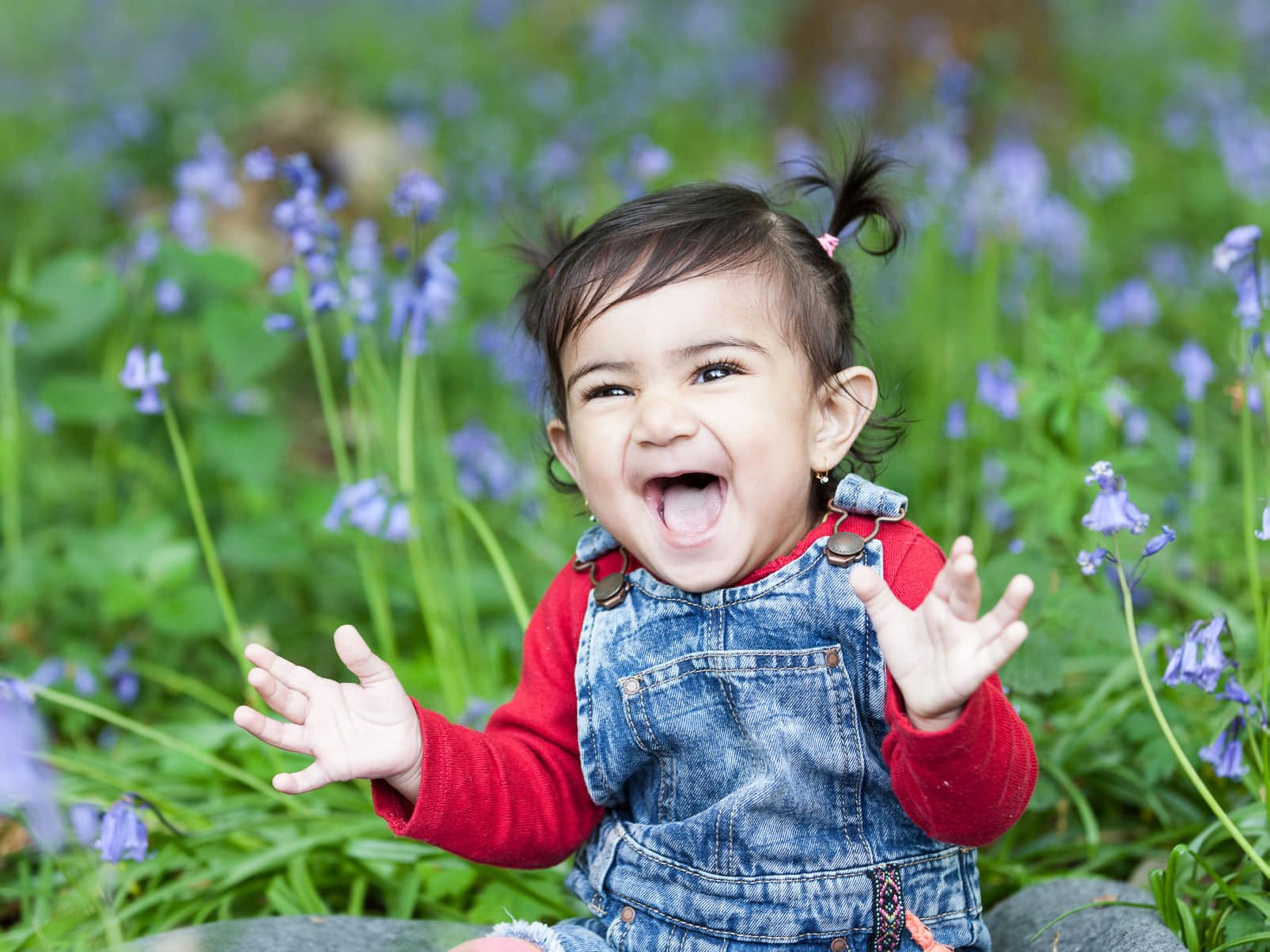 little girl with bunchies sat in the bluebells with a stunning smile at her Bexley family photoshoot