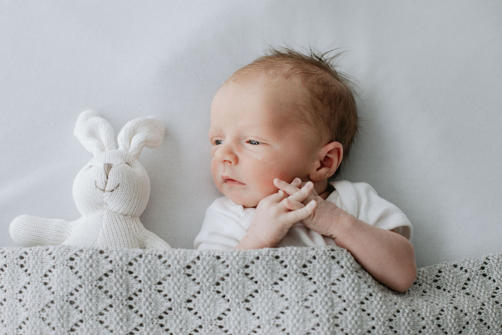 newborn baby tucked into white company blanket with teddy at a newborn photoshoot in a Bexley studio