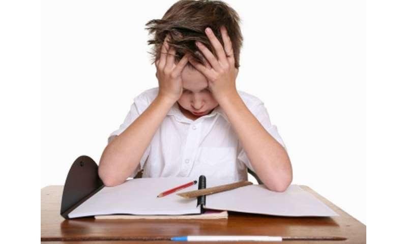 Homing in on homework help