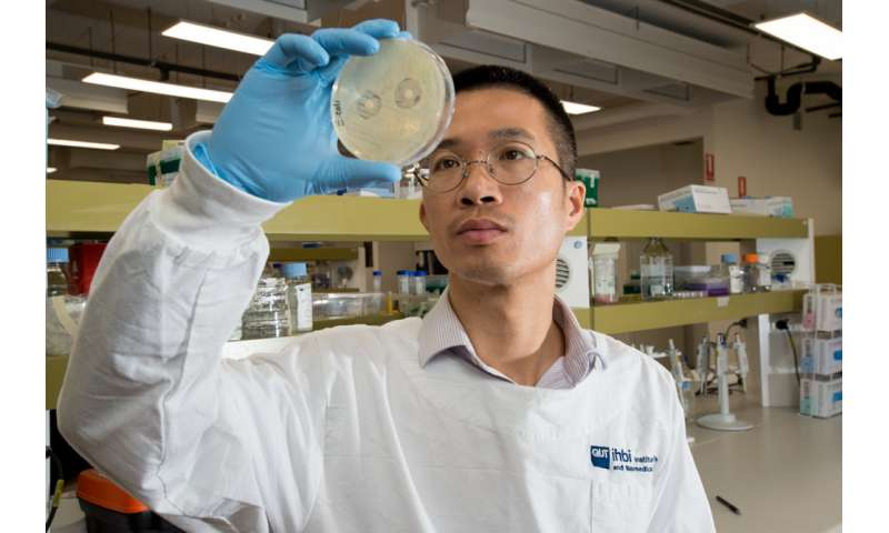 New defence against 'superbug' infections