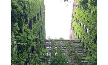 Ciudades circulares del mundo: ¿qué puede hacer la infraestructura verde?
