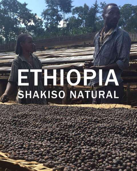 ethiopiashakiso