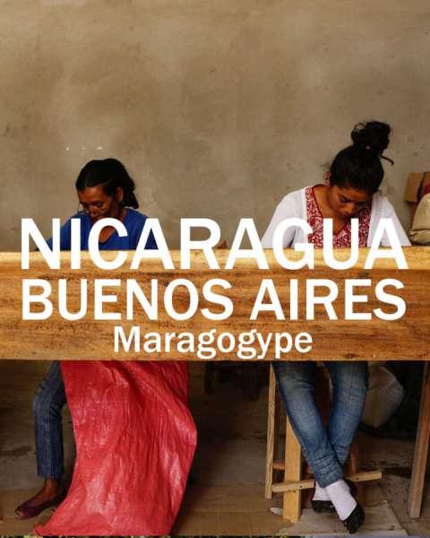marago