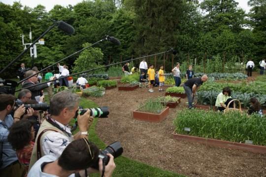 white house garden harvest-5