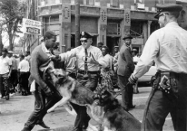 Dr King - Birmingham Campaign Attack Dogs