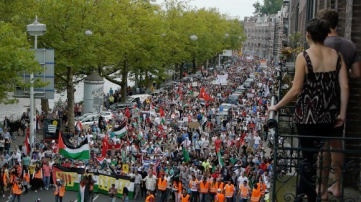 Protests for Gaza29