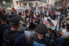Protests for Gaza35