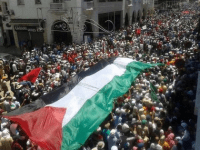 Protests for Gaza48