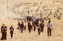 Displaced people from minority Yazidi sect, fleeing violence from forces loyal to Islamic State in Sinjar town, walk towards Syrian border, on outskirts of Sinjar mountain