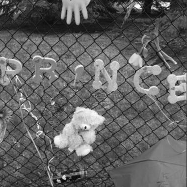 Prince Memorial 45