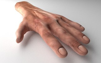 Rigged and Animated 3d Hands