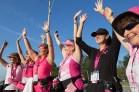 celebrate 2013 Michigan Susan G. Komen 3-Day breast cancer walk