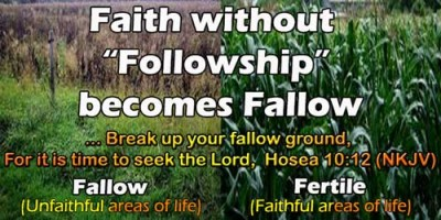 Faith without Followship becomes Fallow image