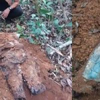 Corpo é encontrado com pernas decepadas no Ramal dos Terçados, em Sena Madureira