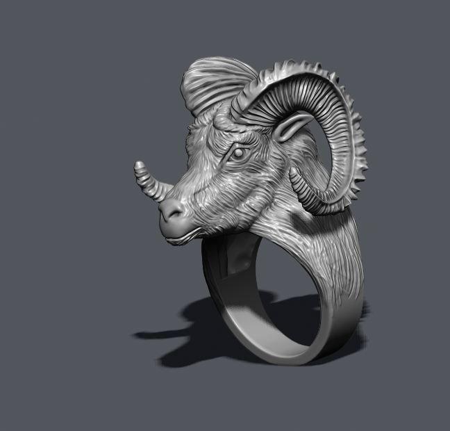aries ring 3d model