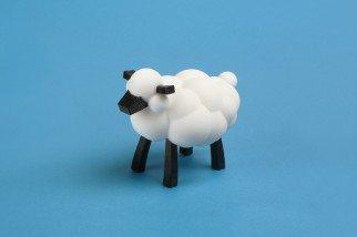 0_INTRO_sheepAlone