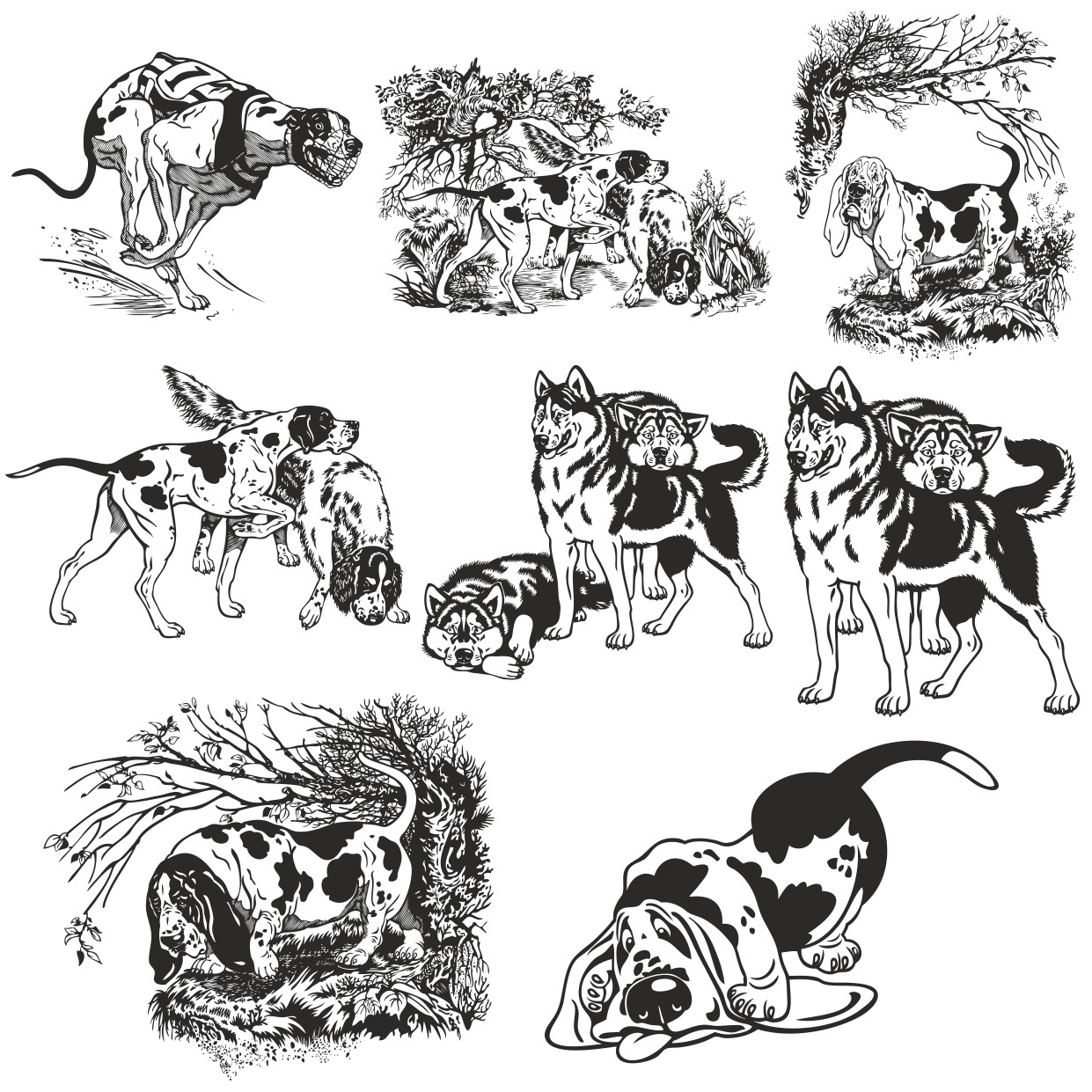 Dogs vector collection Free Vector Cdr File Free Download