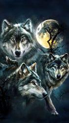 Iphone Art Wolf Wallpaper