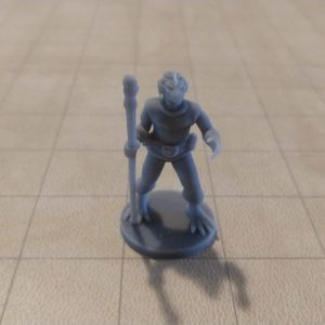Adventurers/NPCs Dragonborn Druid