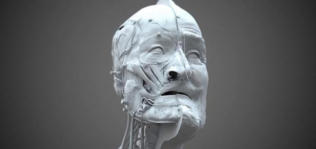 3D Forensic facial reconstruction