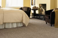 3 Dollar Carpet  Utah Discount Carpet