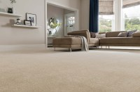 Carpet Utah - Great Price & Quality - Great Carpet Starts ...