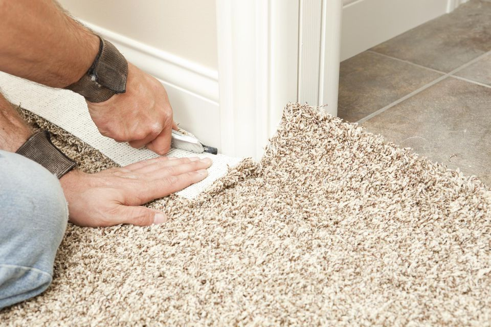 utah carpet, carpet plus, carpet sandy utah, flooring salt lake city, carpet utah county, ogden carpet, flooring stores in utah, shaw flooring utah, flooring utah, ogden carpet outlet, flooring companies in utah, carpet stores in utah county