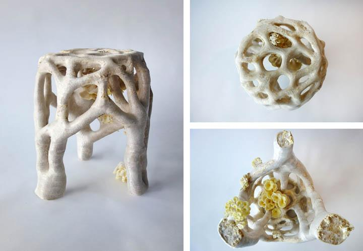 3D Printing With Fungus  Artist Creates Chairs and Other