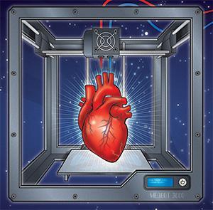 organs-3