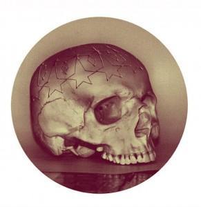 wagstaff skull image