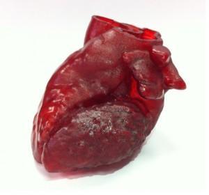 3D-printed_heart-2-610x570
